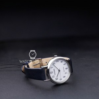 Citizen Sports EM0571-16A Womens Wristwatch Eco Drive/Solar