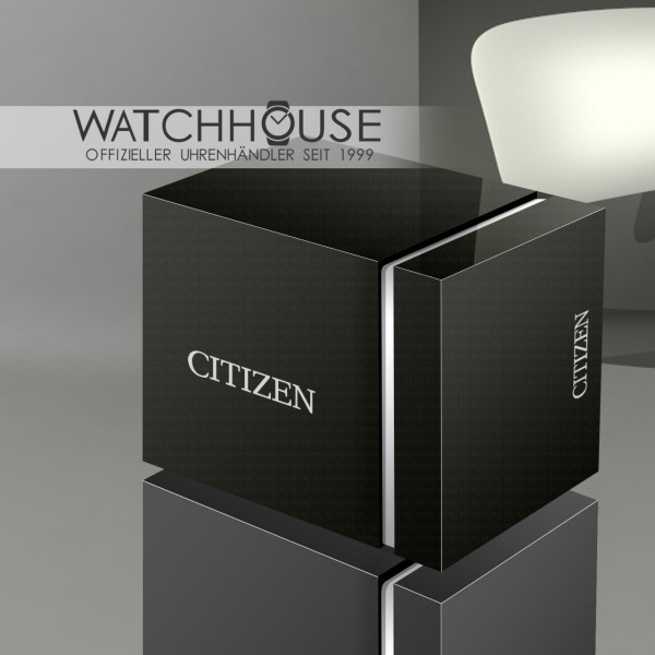 Citizen Elegant Touch Time Watch AC2200-55E Braille Watch