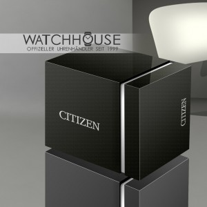 Citizen Sports AW1676-86A Eco Drive Solar Classic Style BiColor